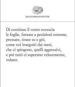 """«Che senso ha tutta questa litania» (da: Cesare Viviani, """"Infinita fine"""", Torino, Einaudi2012)"""