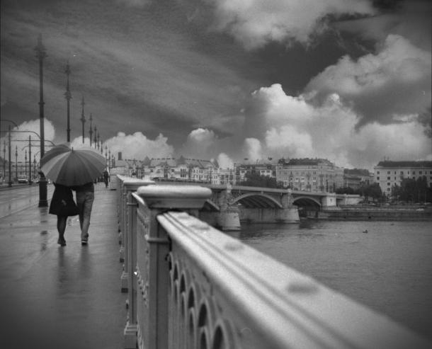 photo by Alina Savin