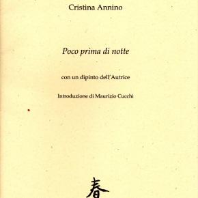 "L'""imploded realism"" di CristinaAnnino"