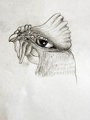 Il gallo è morto   –   di EmmaPretti