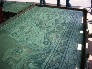 Mosaico ritrovato a Luni
