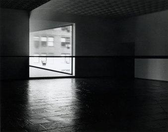 scrim veil - black rectangle - natural light (1)