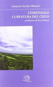 cope_L'essenziale curvatura del cielo (1)