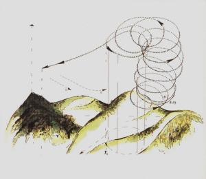 carretta_disegni di volo (1)